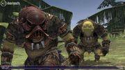 Xbox 360 - Final Fantasy XI - 0 Hits