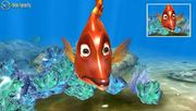 Xbox 360 - Sea Life Safari - 0 Hits