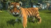 Xbox 360 - Kinectimals - 84 Hits